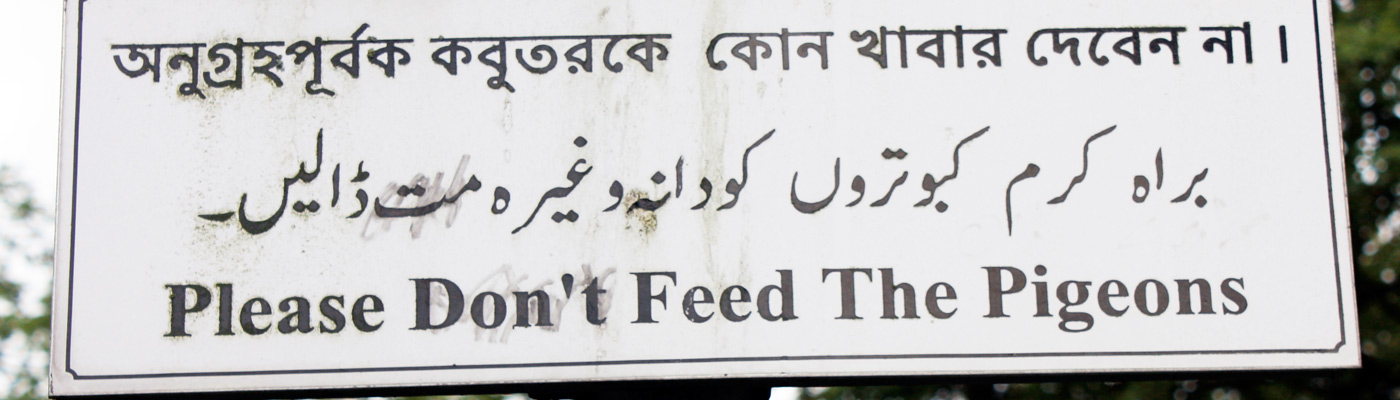 Sign that says dont feed the pigeons